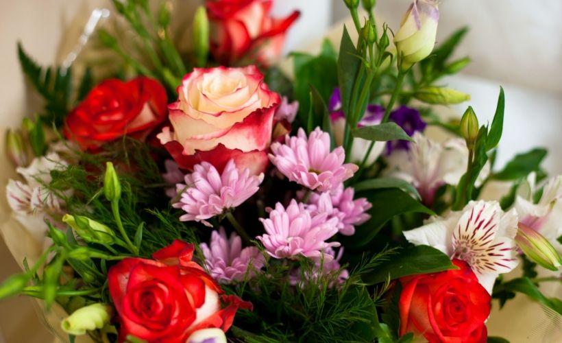 Совхоз московский часы работы купить цветы самые продаваемые цветы на 8 марта
