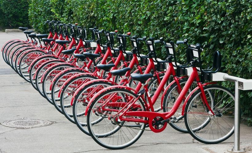 Организовать масштабную велопрогулку