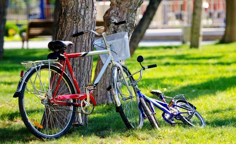 Отправиться на велоэкскурсию по городу