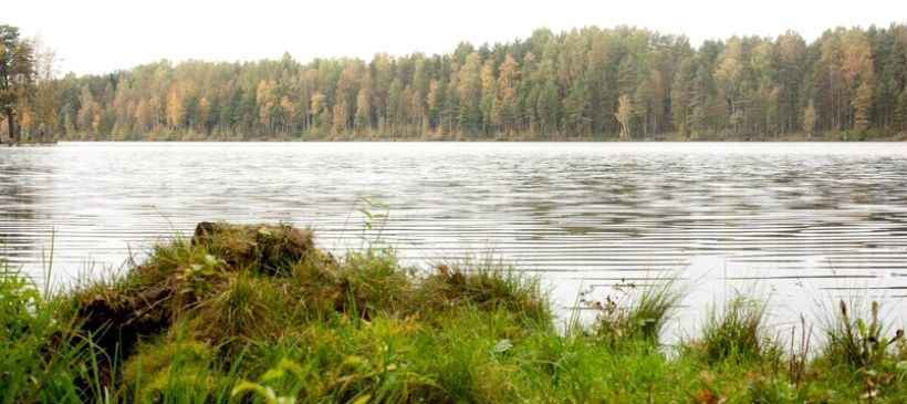 Коркинские озера