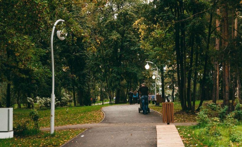 Сосновая роща (парк ДК Химиков)