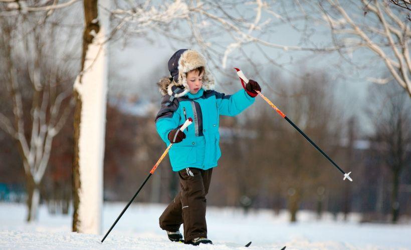 Лыжные прогулки в парке «Сосновый бор»