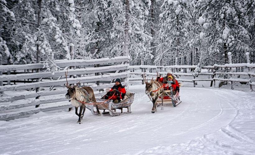 Катание на северных оленях по зимнему парку «Берёзовая роща»