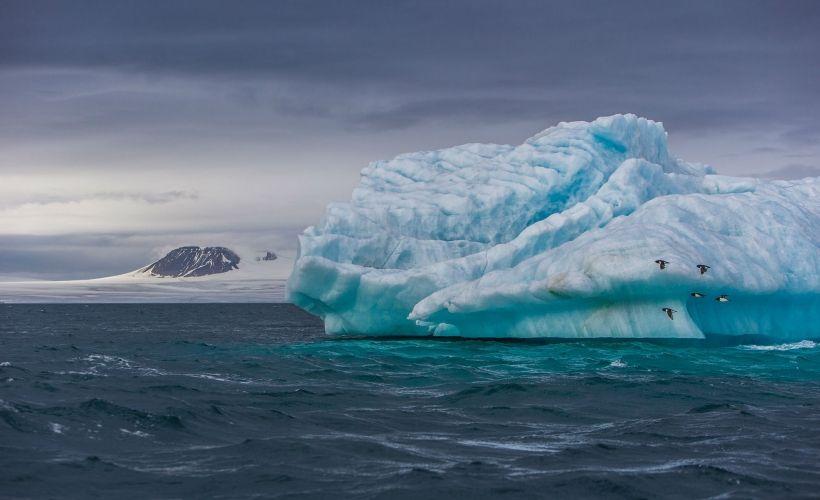 «Айсберги Земли Франца-Иосифа»