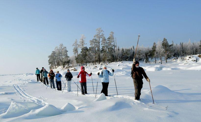 Лыжные прогулки в лесу