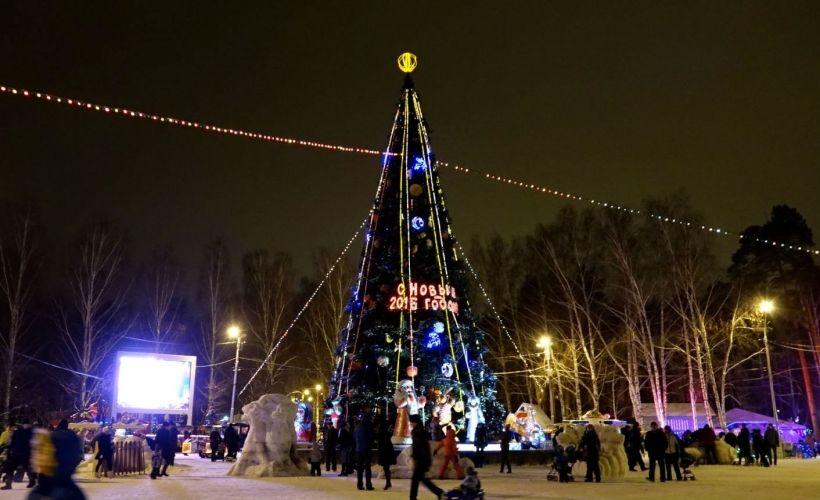 Новогодняя ночь в парке культуры и отдыха им. Маяковского