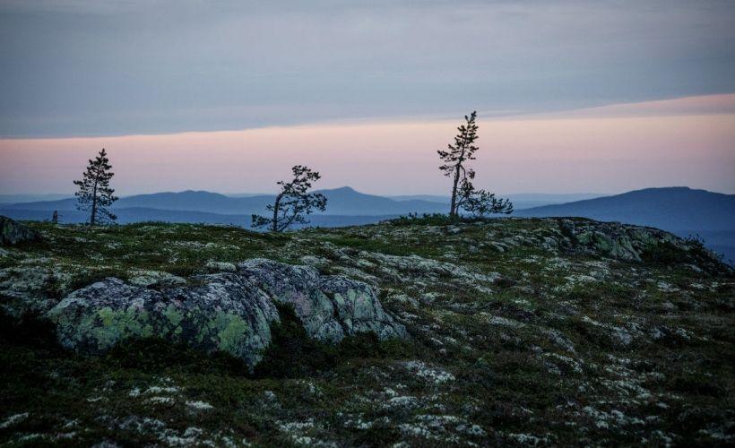 Подняться на самую высокую гору Карелии — Нуорунен