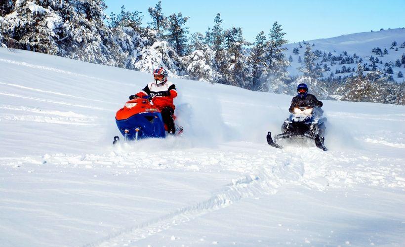 Покататься на снегоходе по заснеженному лесу Карелии