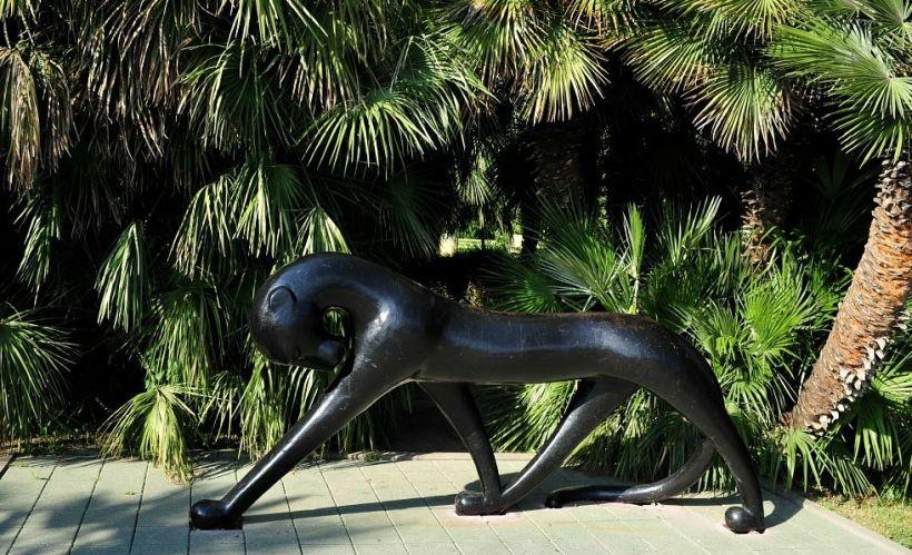 бронзовая индивидуалки нижнего лет пантера 18