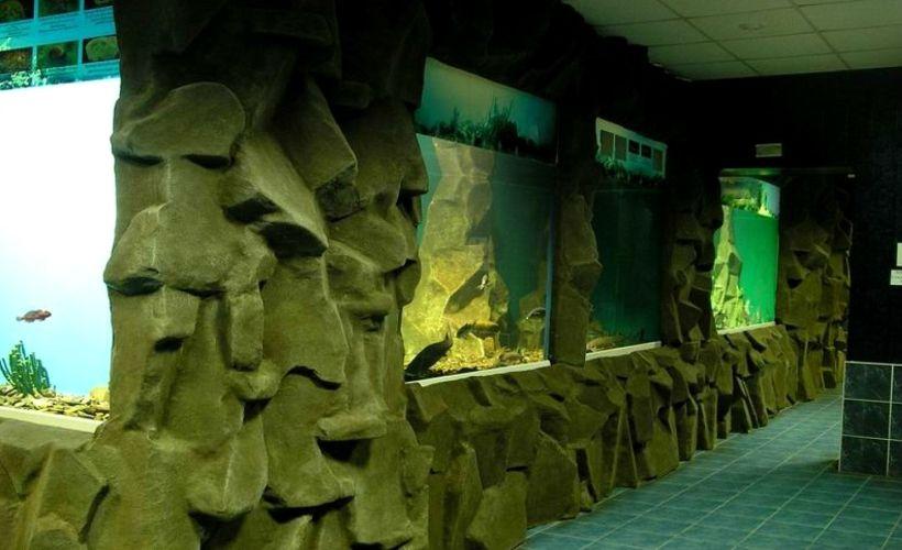 Байкальский музей Иркутского научного центра