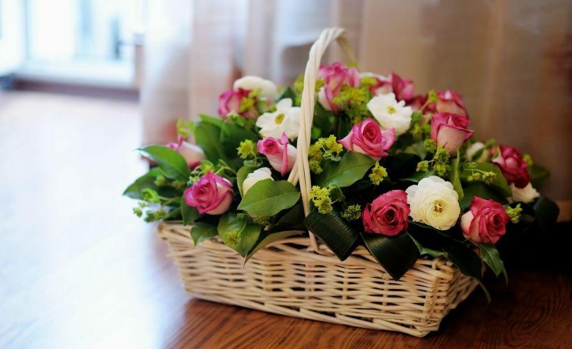 Доставка цветов краснодар мастер цветов цветы юбилейный купить