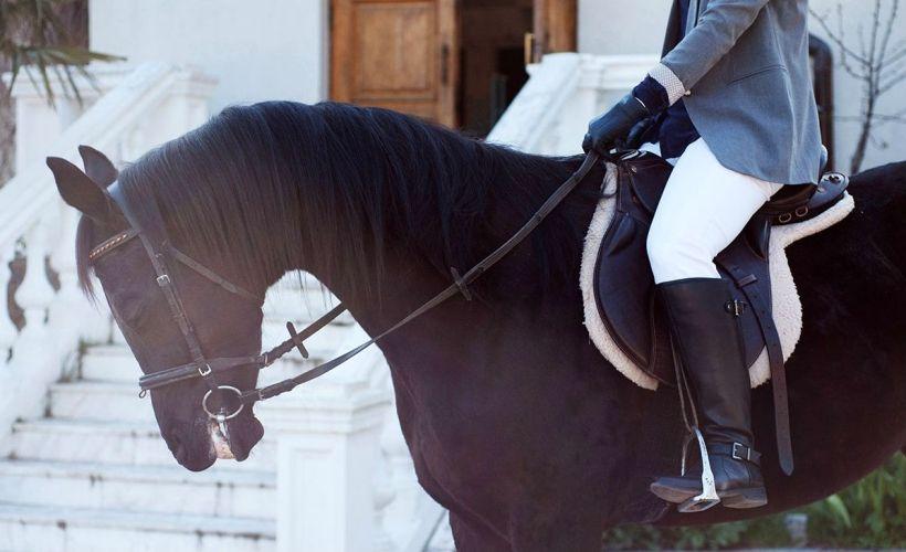 Частная конюшня «Оствинд» в Евпатории