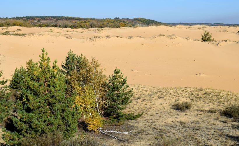 Пустыня Большие Буруны