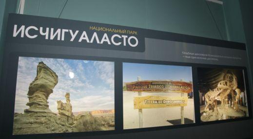 Выставочный комплекс Дарвиновского музея