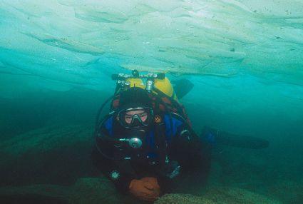 Sergey Dorofeev Diving