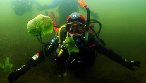 Федерация подводного спорта России