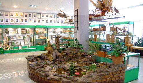 Музей леса по Красноярскому краю