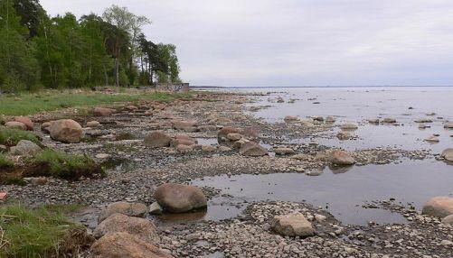 Комаровский пляж