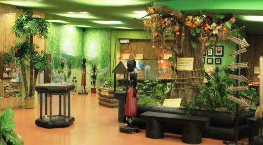 Сад тропических бабочек «Метаморфоза»
